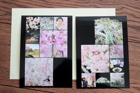 お花見フォトのお品書き (5)