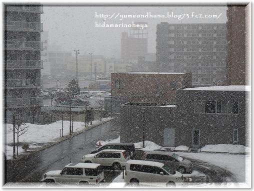 001-3月の雪1603251507