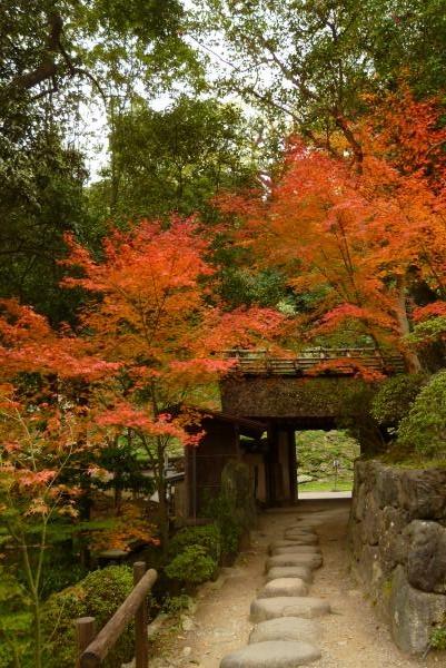 紅葉渓庭園 2015 秋