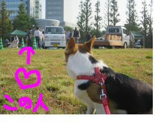 snap_yumiaki6224_201510615838.jpg
