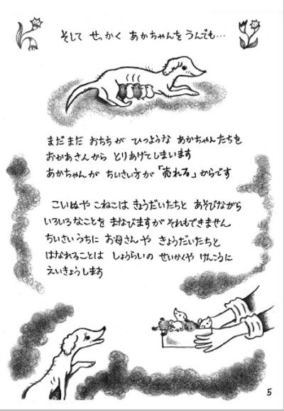 ブログNo.533(皆様に読んでほしい絵本)5