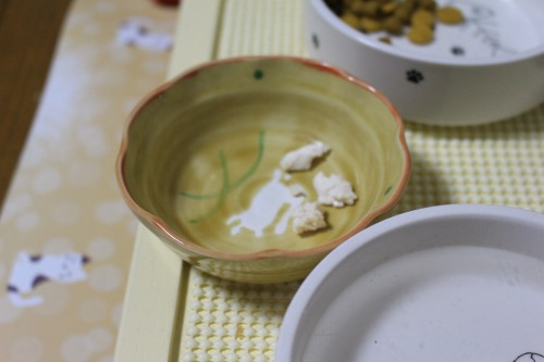 ブログNo.575(にゃ!鶏肉にゃん♪)20