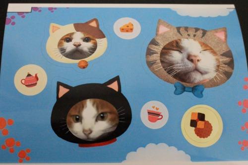 ブログNo.539(お出迎え猫と宝物)7