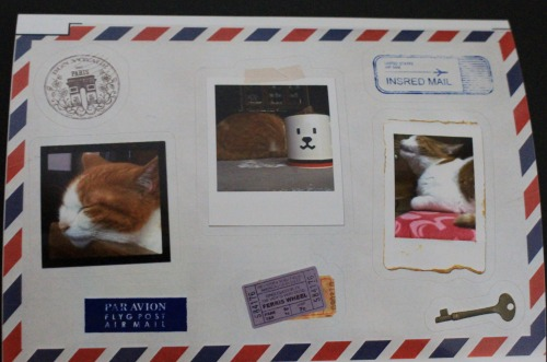 ブログNo.539(お出迎え猫と宝物)8