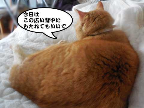 16_04_01_2.jpg