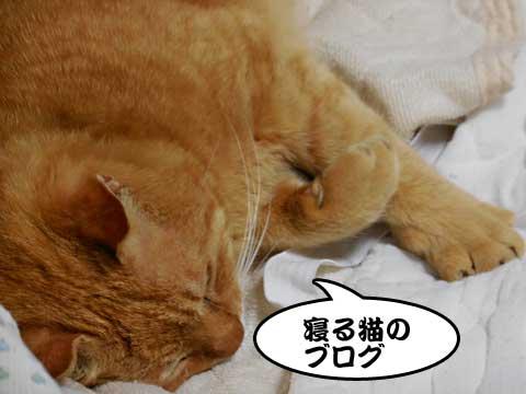 16_04_09_1.jpg