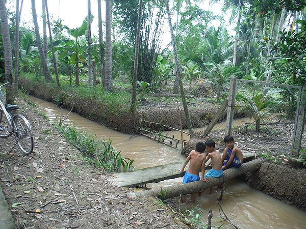 森の中の水路