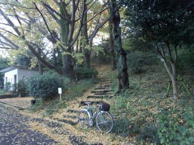 photo_mituike_1127_6_2015_1127.jpg