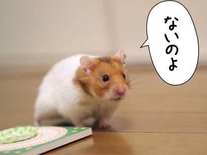 sasuga6.jpg