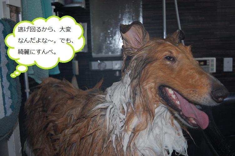 ohuro04.jpg