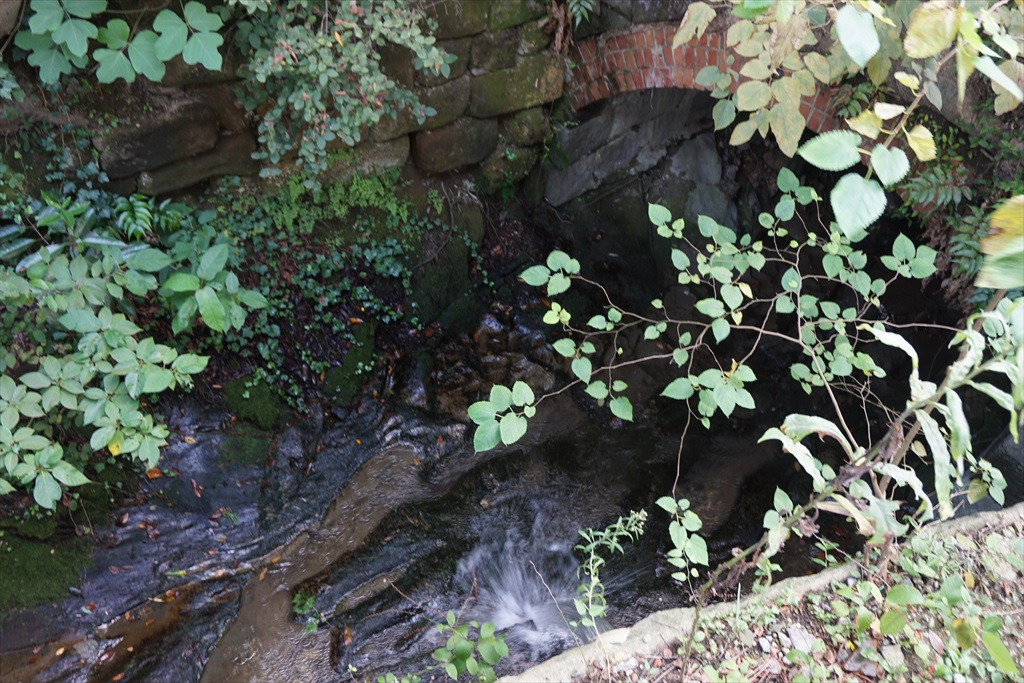 駅の真下を水が流れている_1