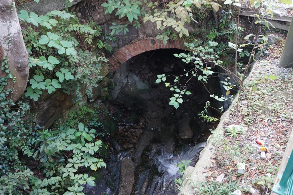 駅の真下を水が流れている_2