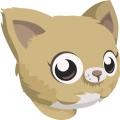 ネコ・顔2