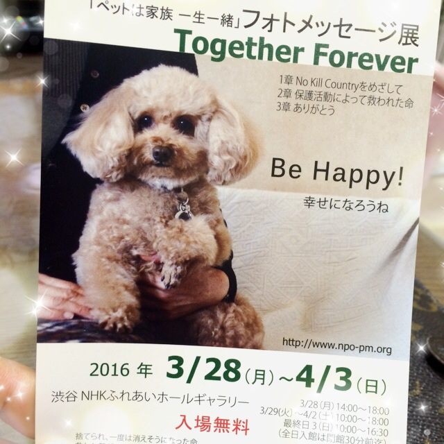 20160326121045d2b.jpg