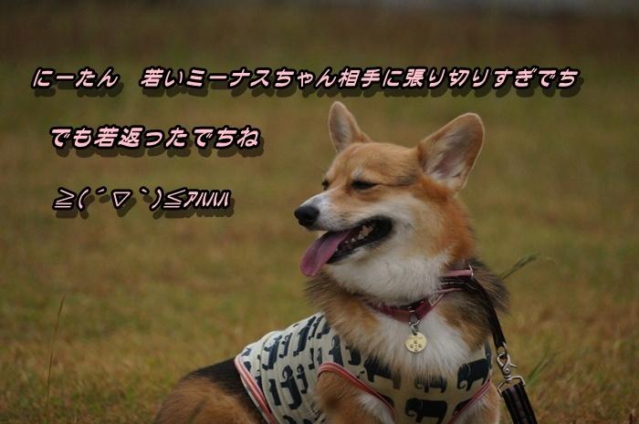 DSC09759.jpg