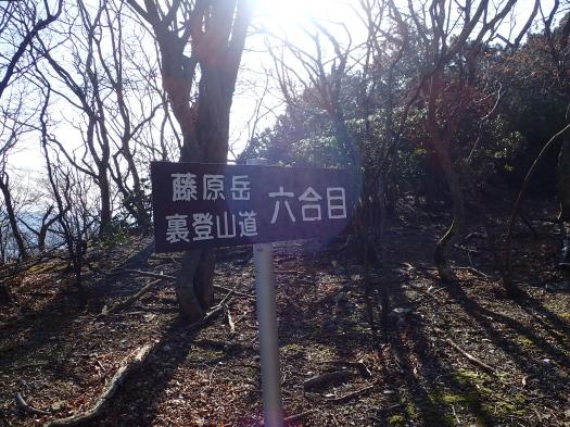 160311_083036021.jpg