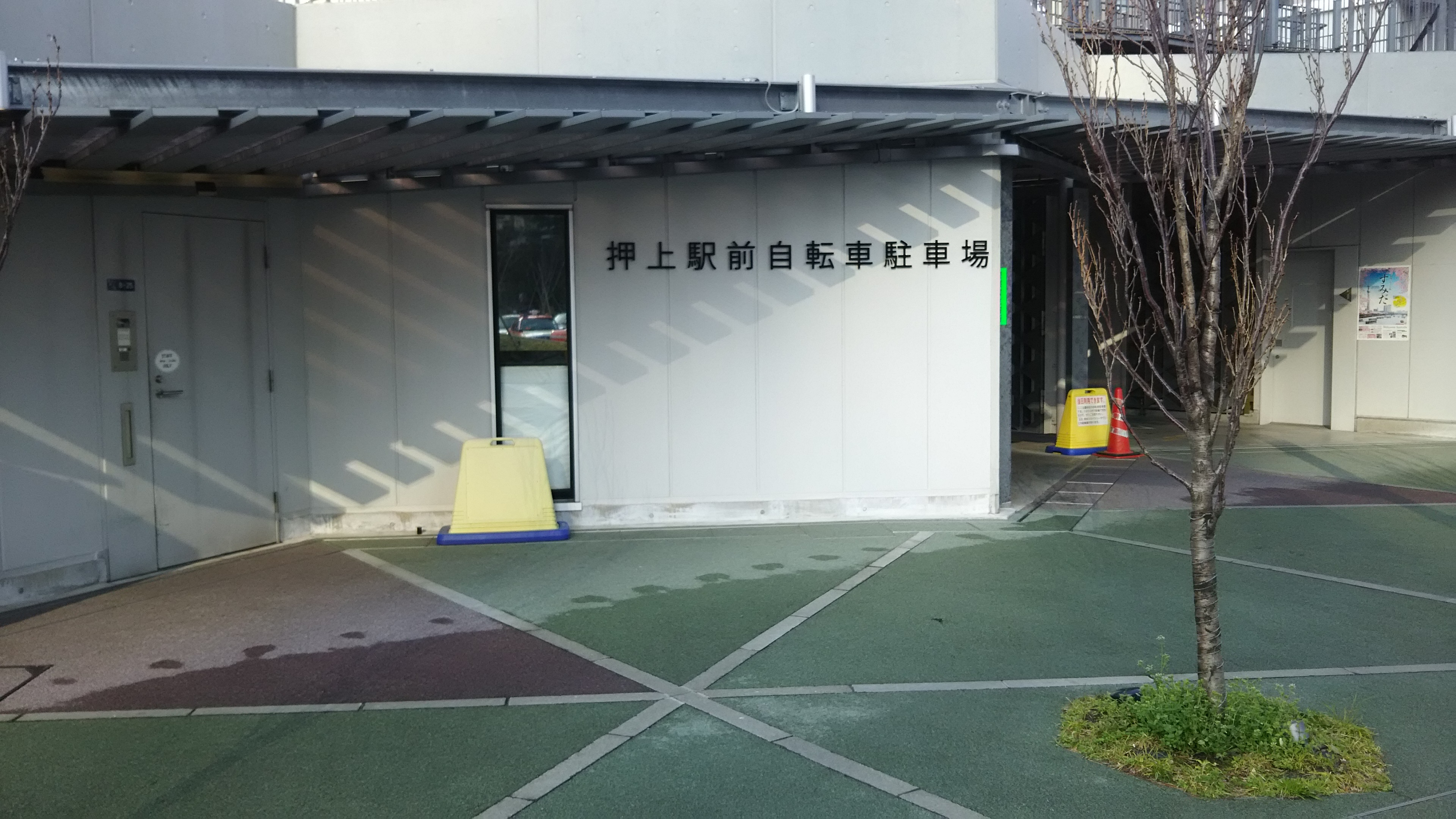 3DSC_0065.jpg