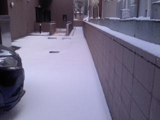 0321雪