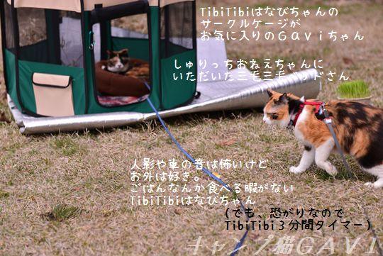 160410_3337.jpg