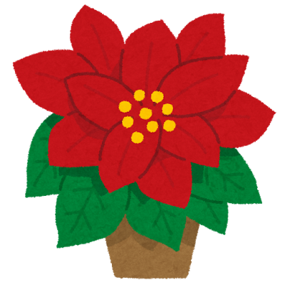 flower_poinsettia.png