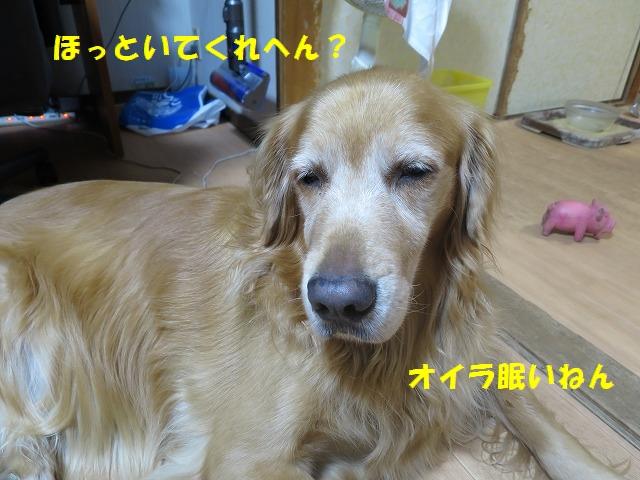 IMG_6917.jpg