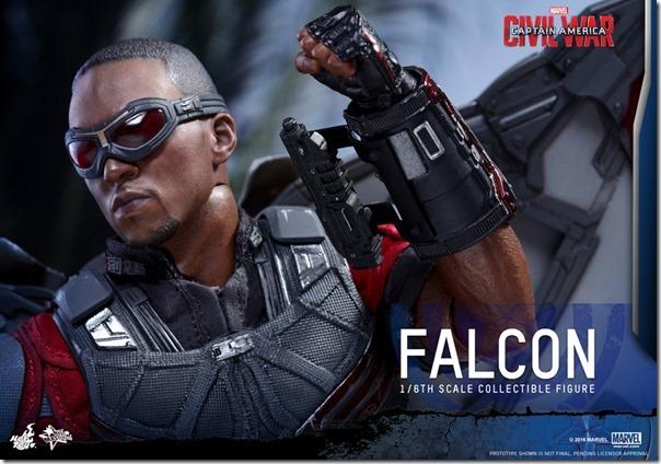 cw_falcon-17