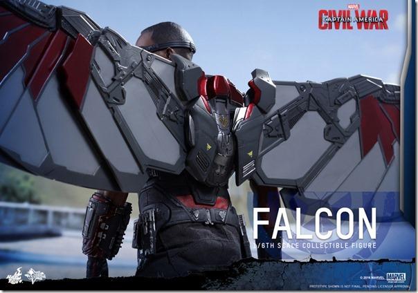 cw_falcon-18