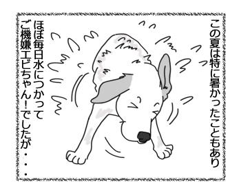 羊の国のラブラドール絵日記シニア!!「お散歩クオリティ」2
