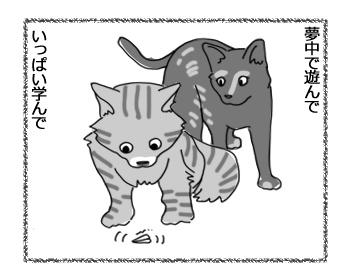 羊の国のラブラドール絵日記シニア!!「去りゆく夏とともに」2