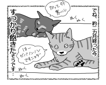 羊の国のラブラドール絵日記シニア!!「去りゆく夏とともに」4