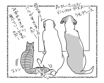 羊の国のラブラドール絵日記シニア!!「最近のトイレ前事情」3