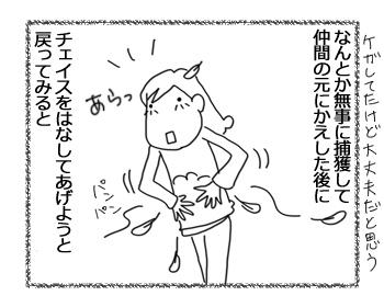 羊の国のラブラドール絵日記シニア!!「支え合ってる」3