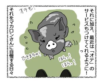 羊の国のラブラドール絵日記シニア!!「負けず嫌い」2