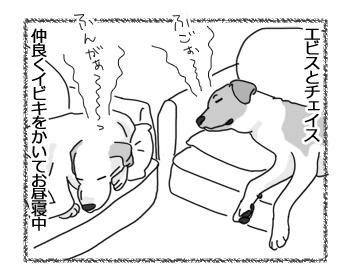 羊の国のラブラドール絵日記シニア!!「夢の中でもライバル!?」2