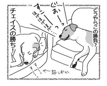 羊の国のラブラドール絵日記シニア!!「夢の中でもライバル!?」5