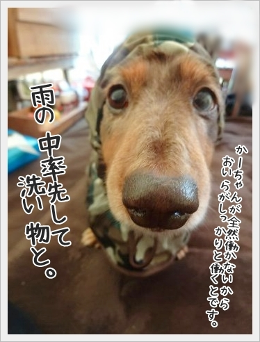 fc2_2015-10-19_0333.jpg
