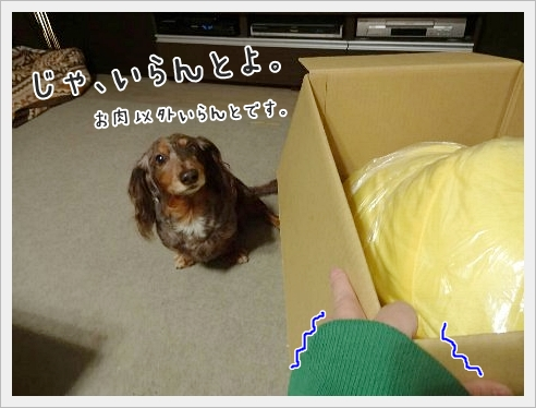 fc2_2015-11-17_05.jpg
