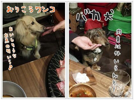 fc2_2015-11-26_10.jpg