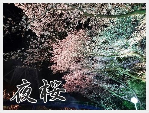 fc2_2016-04-01_04.jpg