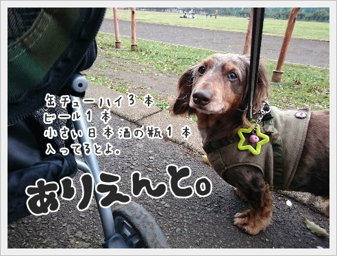 fc2_2016-04-05_03.jpg