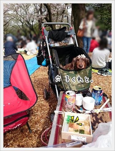 fc2_2016-04-05_10.jpg