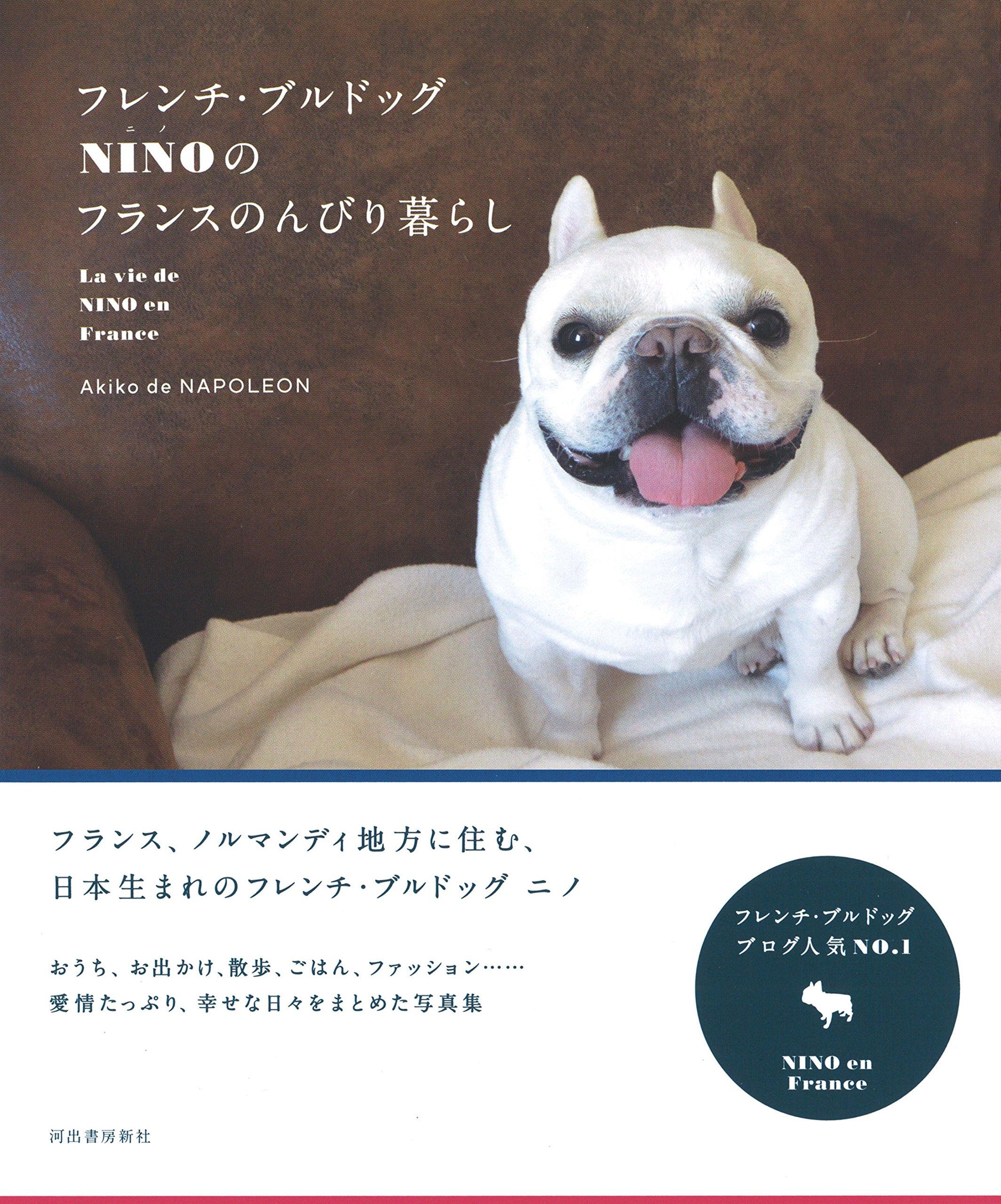 フレンチ・ブルドッグ NINO(ニノ)のフランスのんびり暮らし
