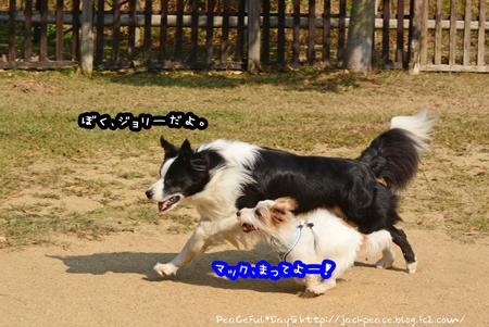151023_yuasa12.jpg