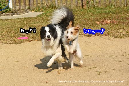 151023_yuasa15.jpg