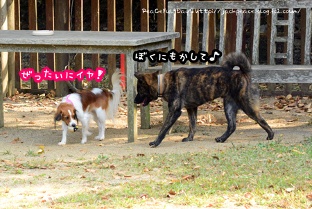 151023_yuasa3.jpg
