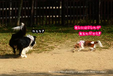 151023_yuasa7.jpg