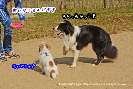 151023_yuasa9.jpg