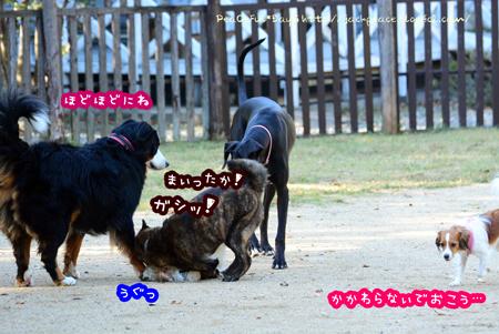 151029_yuasa12.jpg