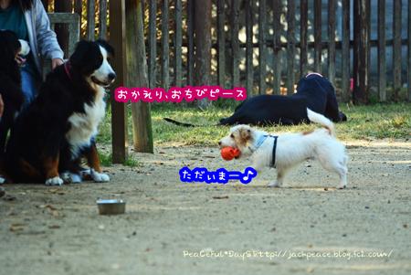 151029_yuasa18.jpg