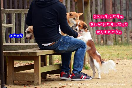 151106_yuasa17.jpg